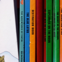 Gordon Choi - Tin Tin books