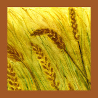Habitat: Grasslands